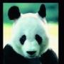 КИТ Финанс страхование - последнее сообщение от Панда