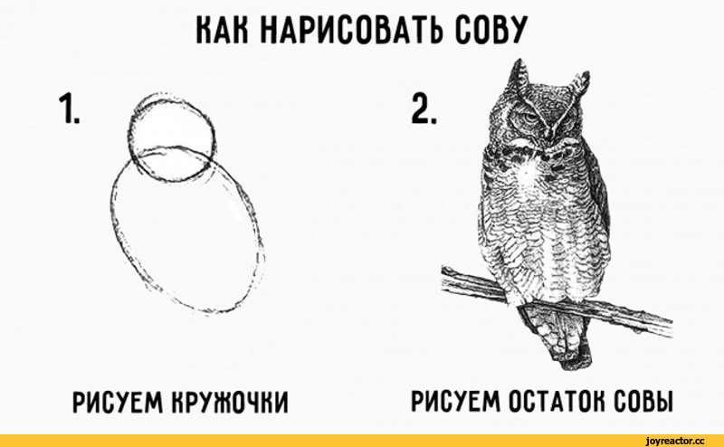 как-нарисовать-кролика-песочница-2065505.jpeg