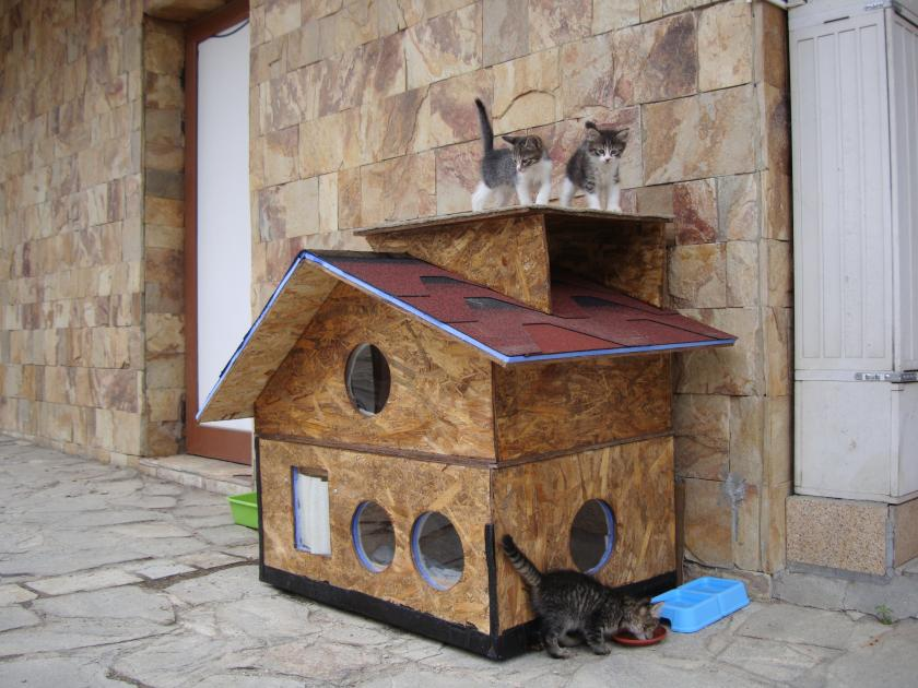 Домик для кошек с подогревом своими руками 93